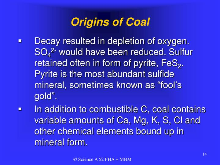 Origins of Coal