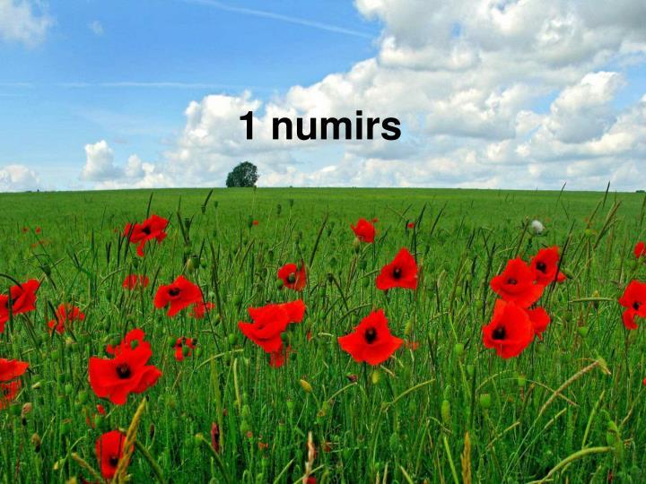 1 numirs