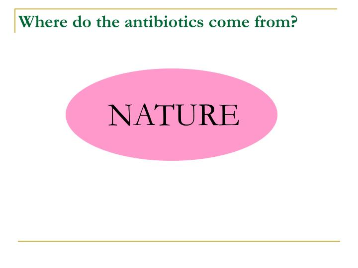 Where do the antibiotics come from?