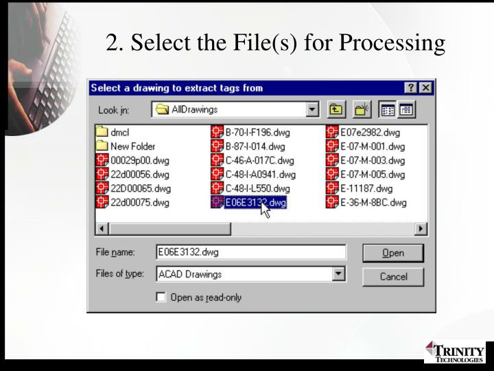 2. Select the File(s) for Processing