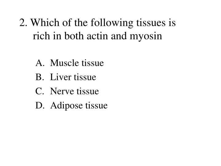 2. Which of the following tissues is rich in both actin and myosin