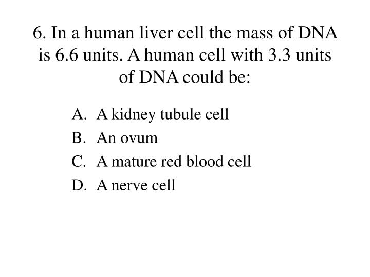 6. In a human liver cell the mass of DNA is 6.6 units. A human cell with 3.3 units of DNA could be: