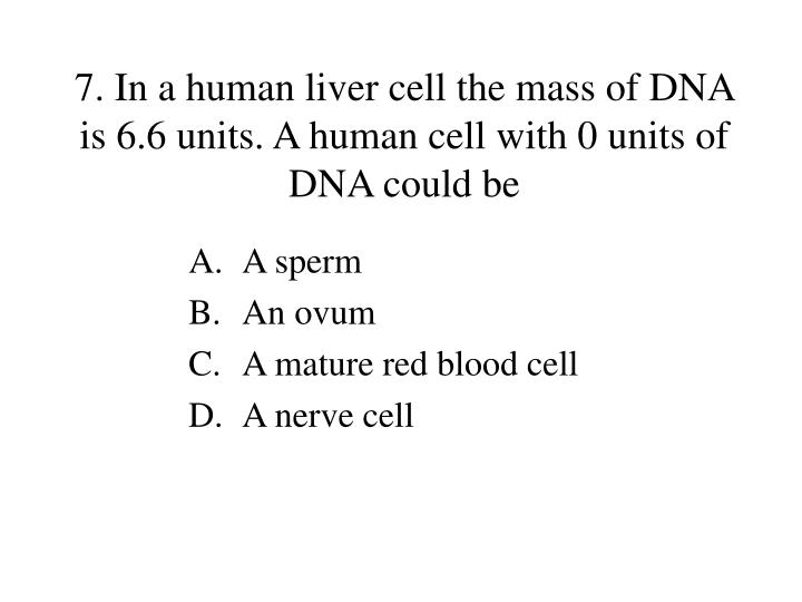 7. In a human liver cell the mass of DNA is 6.6 units. A human cell with 0 units of DNA could be