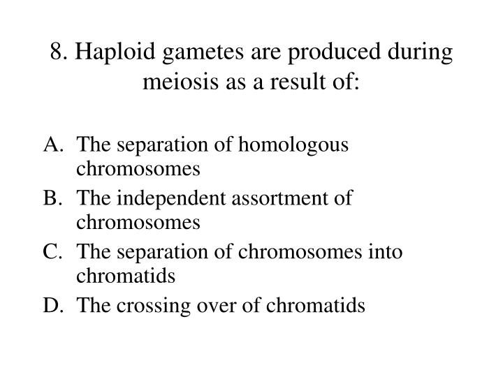 8. Haploid gametes are produced during meiosis as a result of: