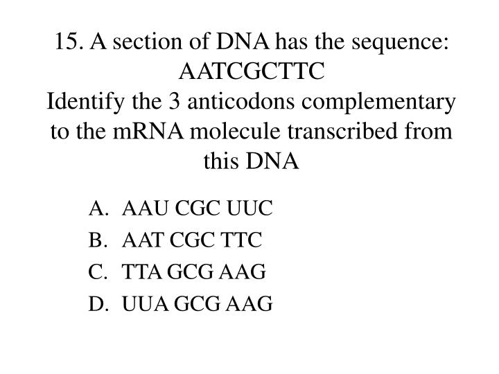 15. A section of DNA has the sequence: