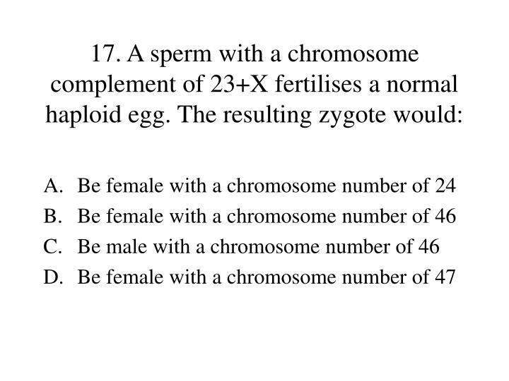 17. A sperm with a chromosome complement of 23+X fertilises a normal haploid egg. The resulting zygote would: