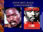 steve biko black consciousness