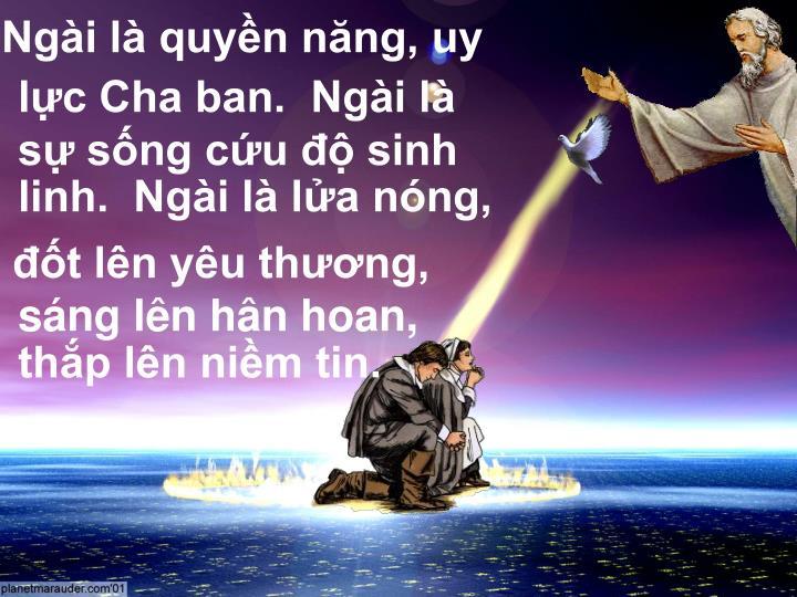 Ngài là quyền năng, uy lực Cha ban.  Ngài là sự sống cứu độ sinh linh.  Ngài là lửa nóng,