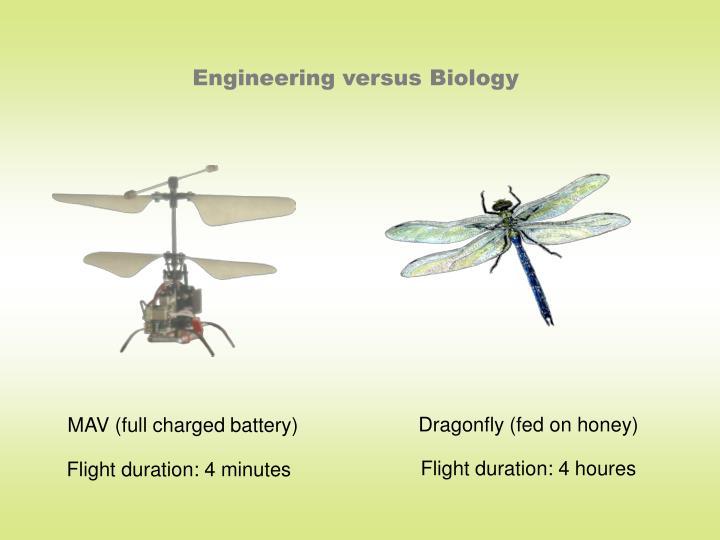 Engineering versus