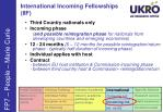 international incoming fellowships iif