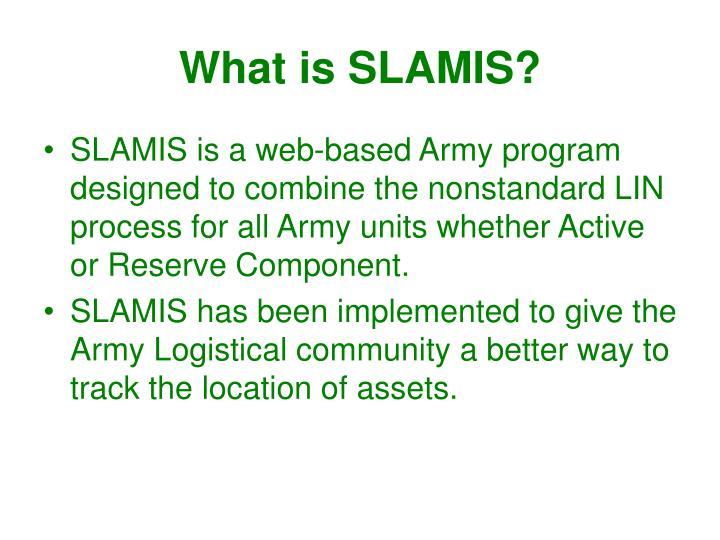 What is SLAMIS?
