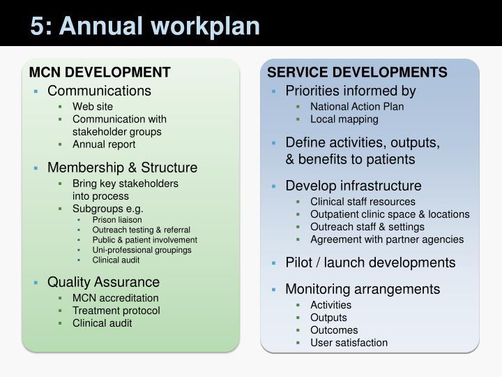 5: Annual workplan