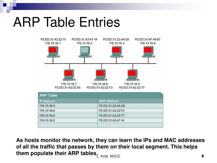 ARP Table Entries