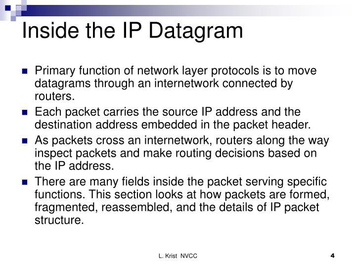Inside the IP Datagram