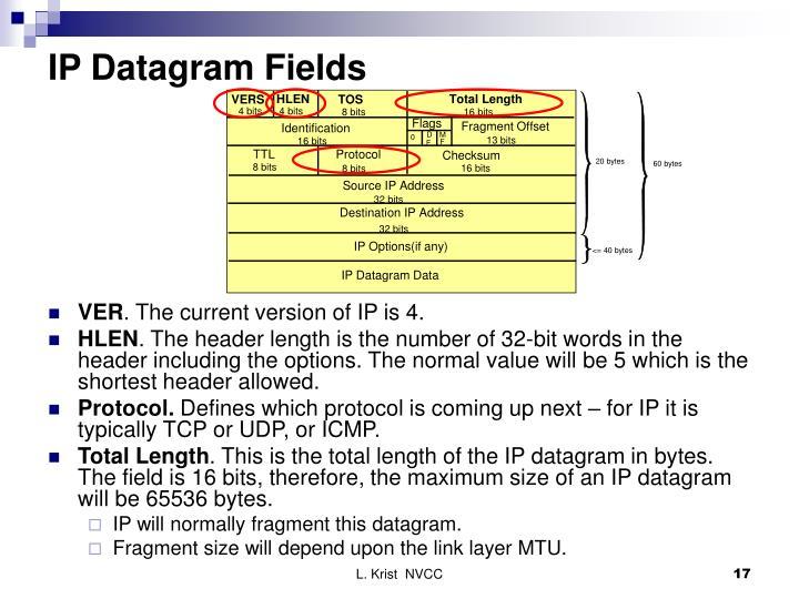 IP Datagram Fields