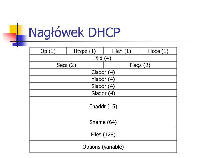 Nagłówek DHCP