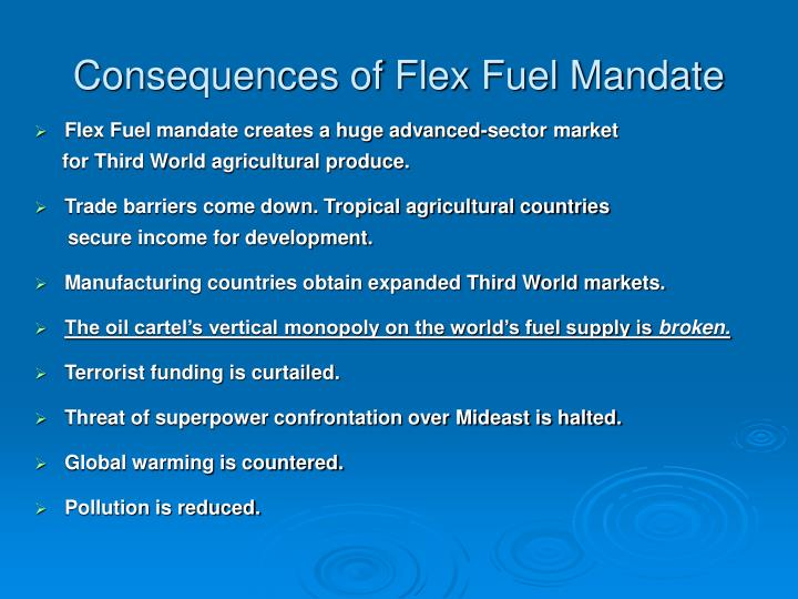 Consequences of Flex Fuel Mandate