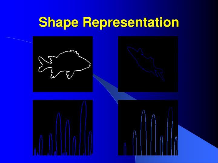 Shape Representation