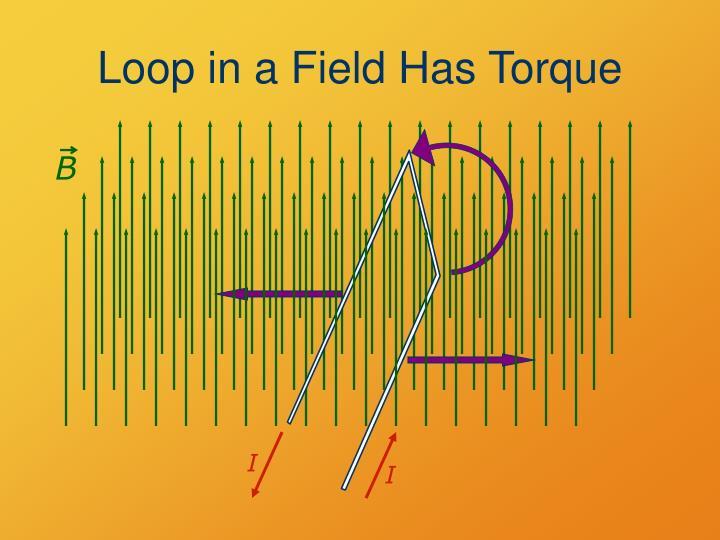 Loop in a Field Has Torque
