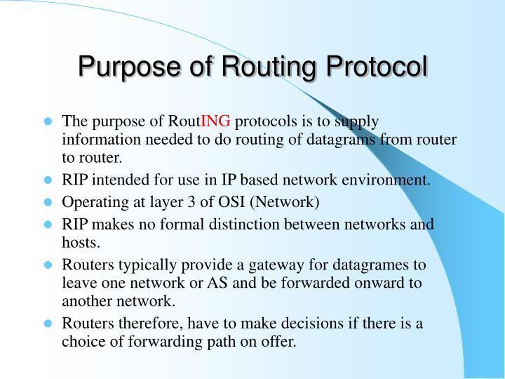 Purpose of Routing Protocol