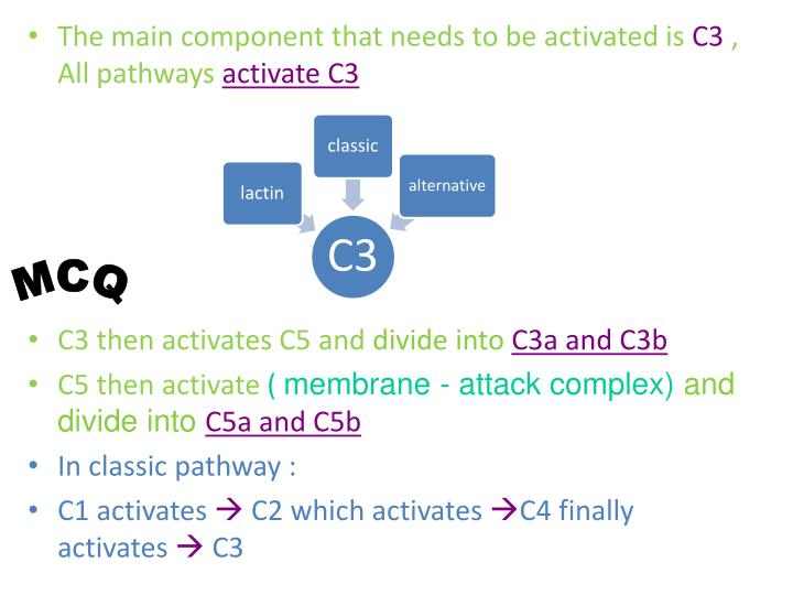 The main component that needs to be activated is