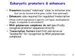 eukaryotic promoters enhancers