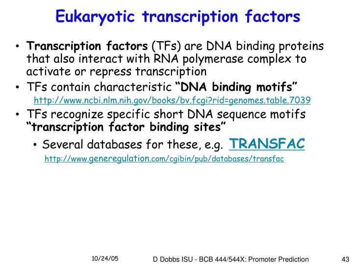 Eukaryotic transcription factors