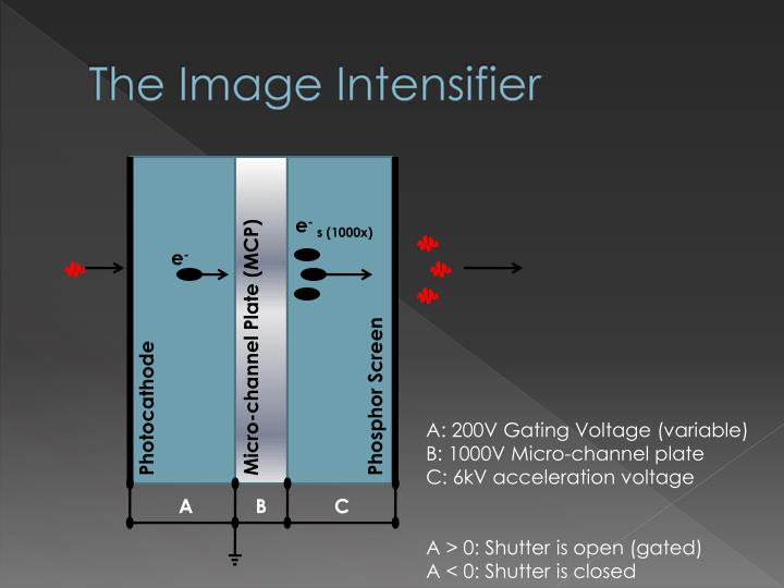 The Image Intensifier