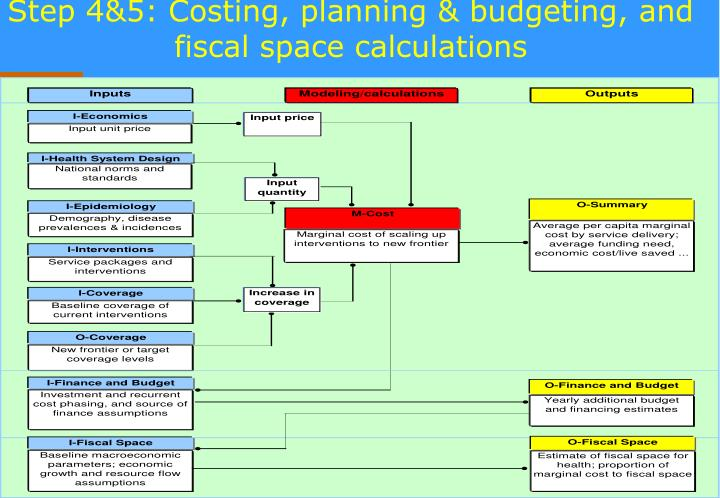 Step 4&5: Costing, planning & budgeting, and fiscal space calculations