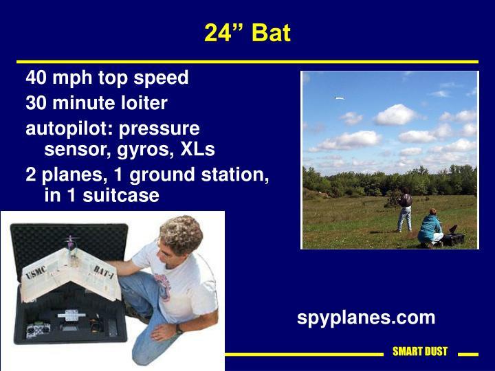 """24"""" Bat"""