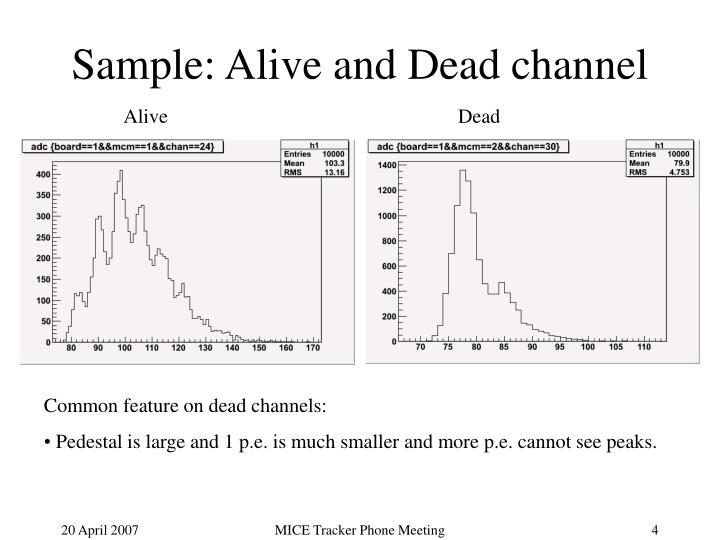 Sample: Alive and Dead channel