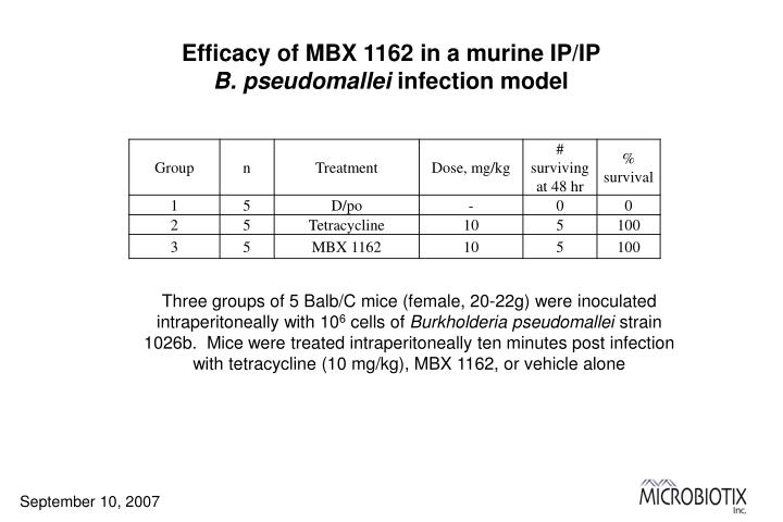 Efficacy of MBX 1162 in a murine IP/IP