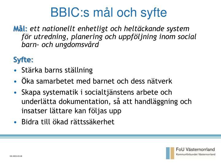 BBIC:s mål och syfte