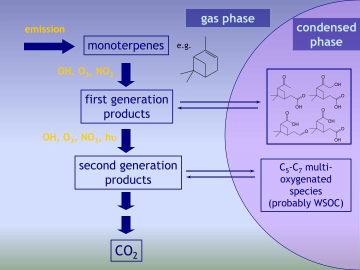 gas phase