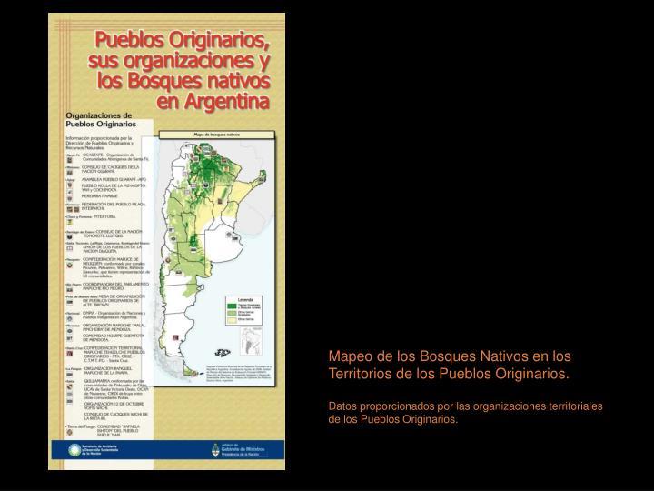 Mapeo de los Bosques Nativos en los Territorios de los Pueblos Originarios.