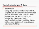 socialtj nstlagen 5 kap1