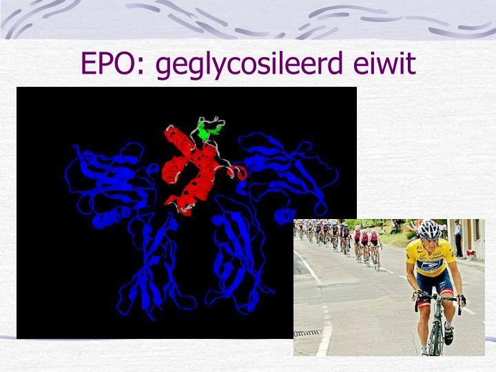EPO: geglycosileerd eiwit
