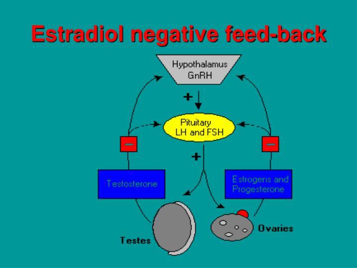 Estradiol negative feed-back