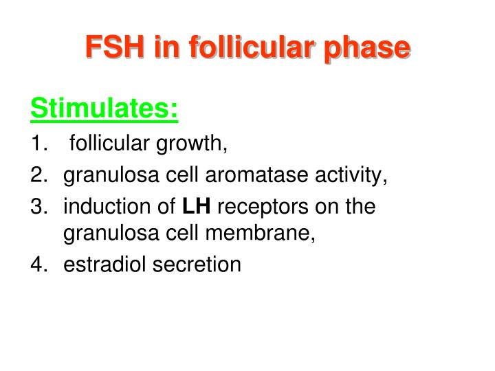 FSH in follicular phase