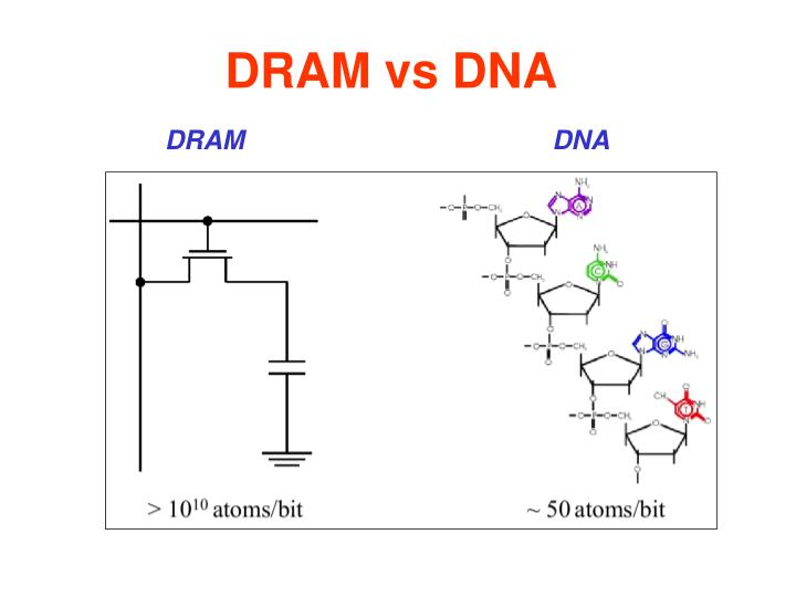 DRAM vs DNA