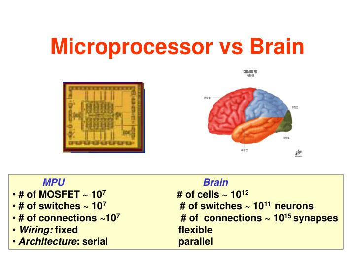 Microprocessor vs Brain