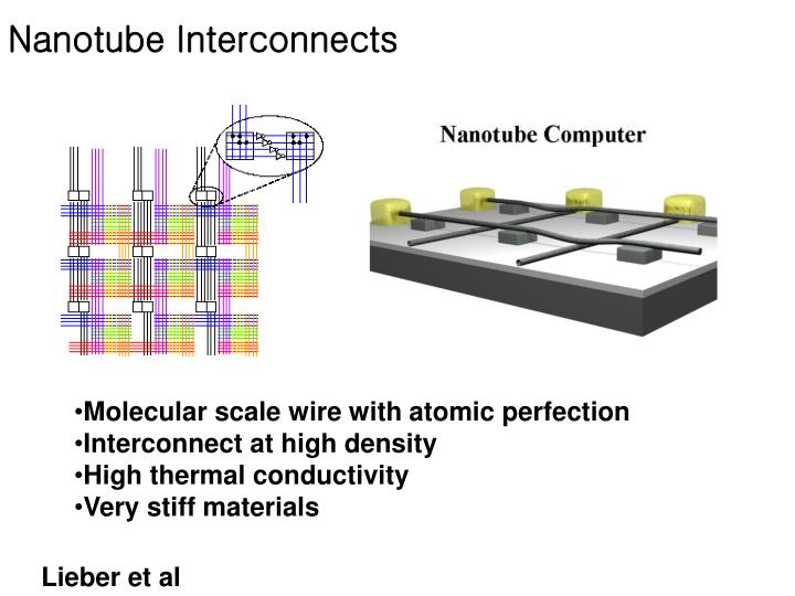 Nanotube Interconnects