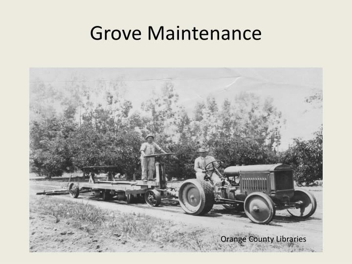 Grove Maintenance