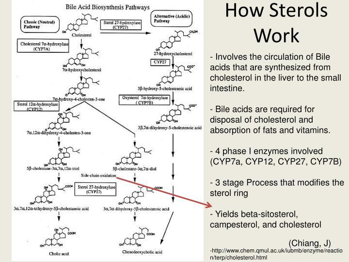 How Sterols Work