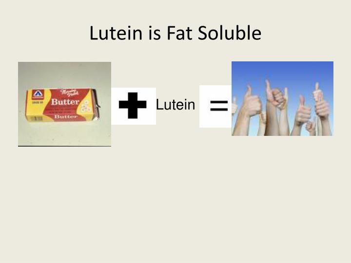 Lutein is Fat Soluble