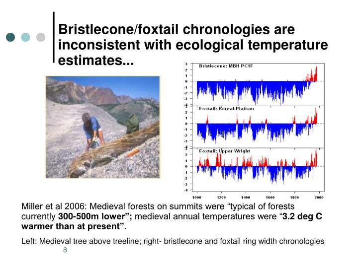 Bristlecone/foxtail chronologies are  inconsistent with ecological temperature estimates...