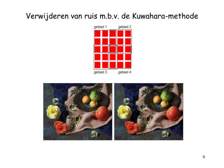 Verwijderen van ruis m.b.v. de Kuwahara-methode
