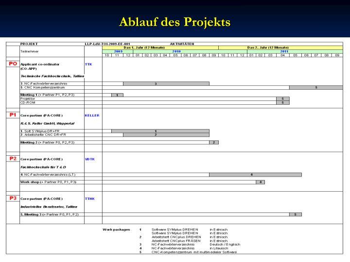 Ablauf des Projekts