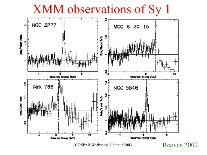 XMM observations of Sy 1
