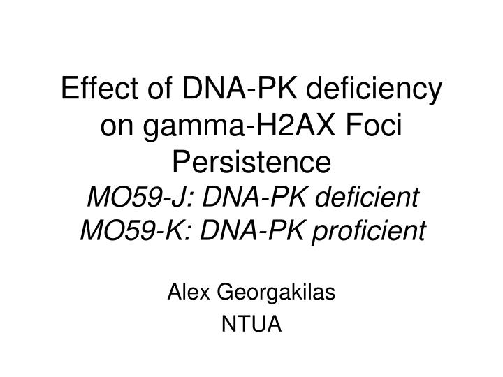 Effect of DNA-PK deficiency on gamma-H2AX Foci Persistence